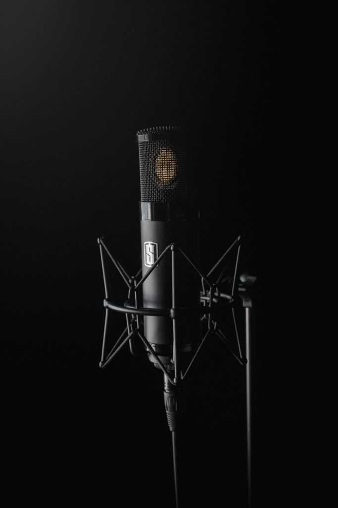The Best Vocal Microphones